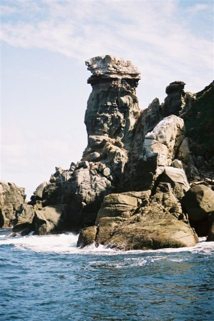 Bank Cormorant Rock