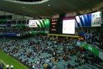 Highlight for Album: Sydney Rugby